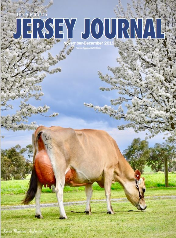 Jersey Journal – Nov/Dec 2019